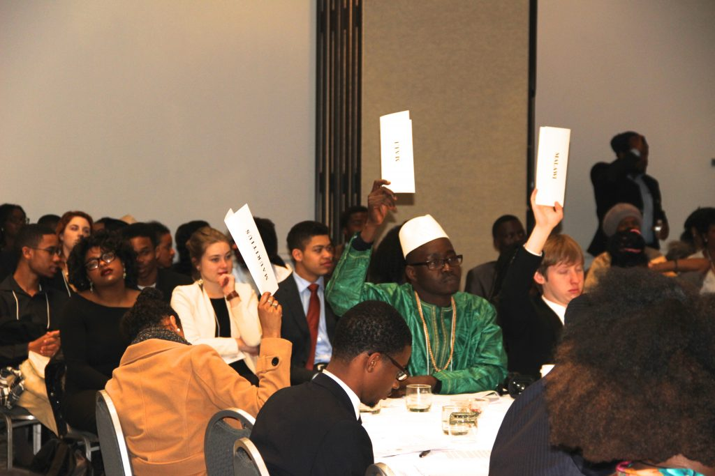 Model African Union Voting